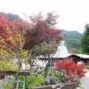 Naguri : Mt.Warabi and Sawarabi-no-yu