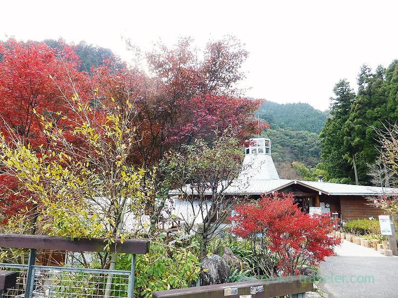 Appearance, Sawarabi-no-yu (Naguri)