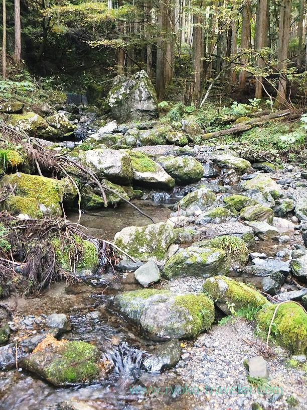 Mountain stream, Mt.Warabi(Naguri)