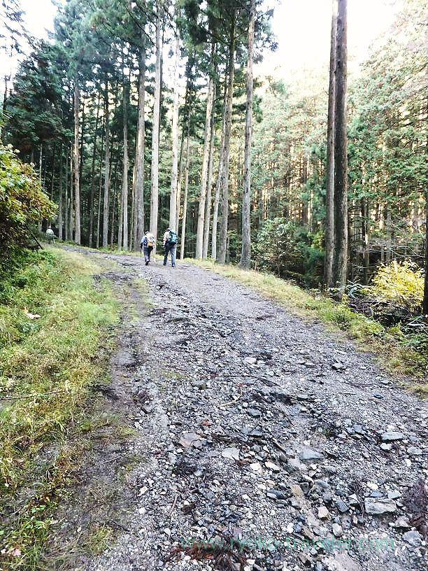 Start of the road, Mt.Warabi(Naguri)