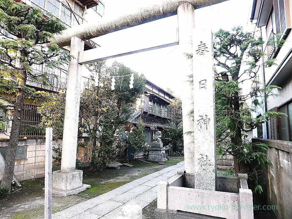 Torii, Kasuga Jinja shrine (Ichikawa)