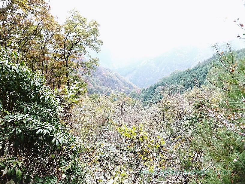 View of around Mt.Fujidana, Mt.Warabi(Naguri)