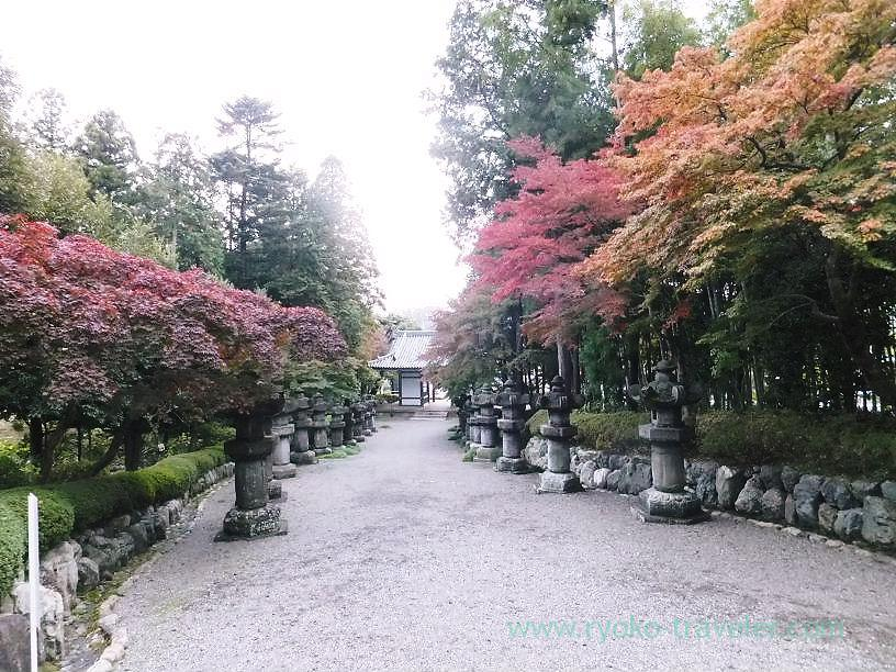 Approach 1, Noninji temple (Hanno)