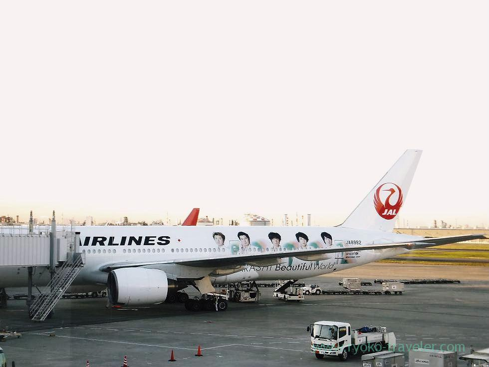 JAL Arashi, Haneda airport (Tokushima & Kagawa 2011)