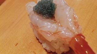 Tsukiji Market : Sushidai