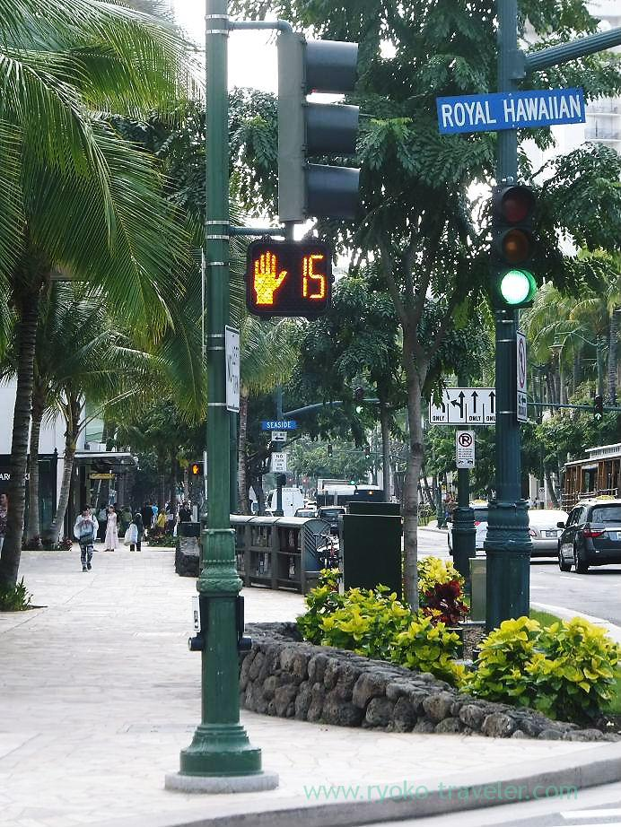Signal1, Honolulu(Honolulu 2012 winter)