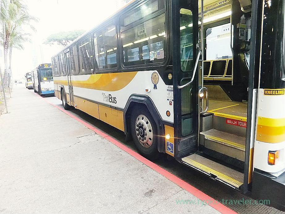 Bus, Waikiki(Honolulu 2012 winter)