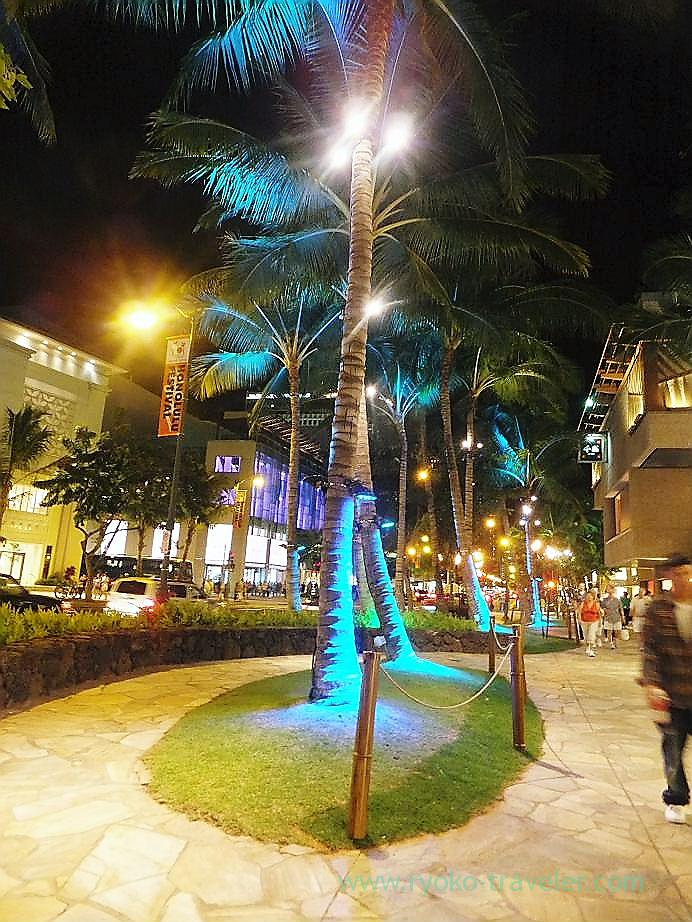 Illumination2, Waikiki(Honolulu 2012 winter)