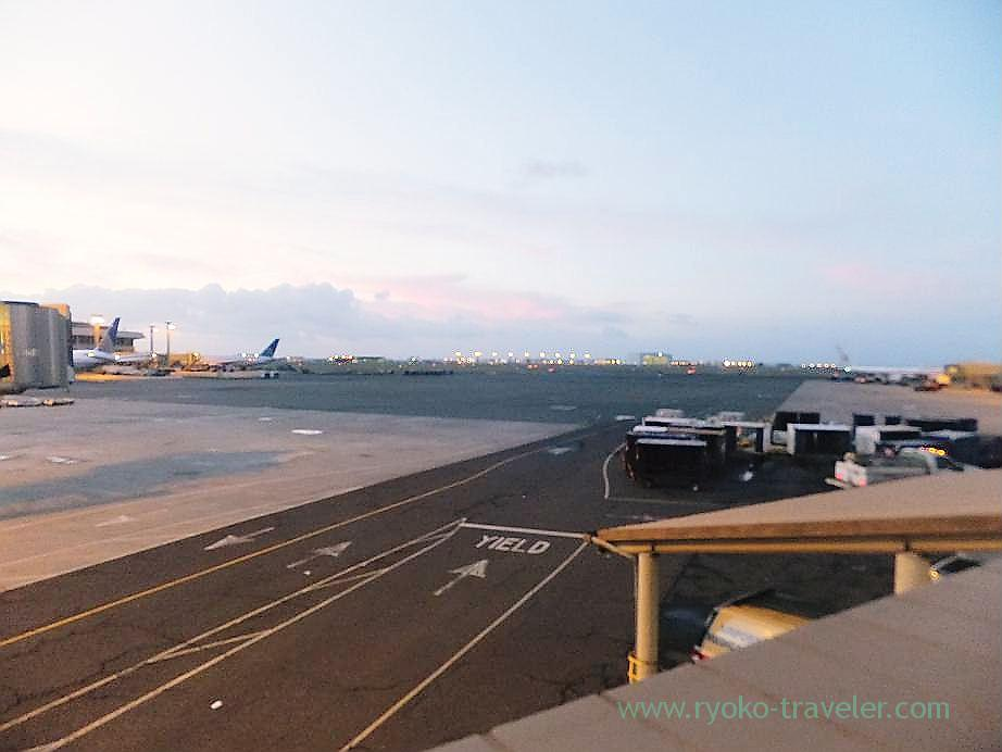 Runway, Honolulu international airport (Honolulu 2012 winter)