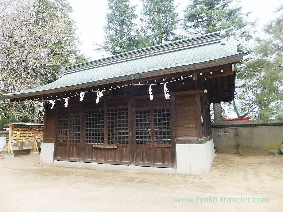 Shinyoko, Katsushika Hachimangu shrine (Motoyawata)