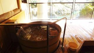 Tokushima and Kagawa 2011 (7) Onsen bath at Hotel Mannaka (大歩危峡ホテルまんなか)