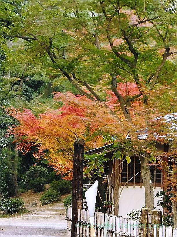 Ritsurin garden14, Ritsurin garden, Takamatsu (Kagawa & Tokushima 2011)