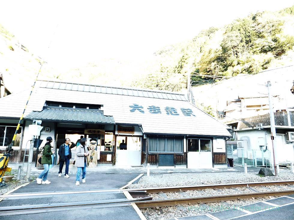Whole appearance, Oboke station, Oboke (Kagawa & Tokushima 2011)