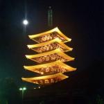 Light up Temple Sensoji and Tokyo Tower (Asakusa and Shiba)