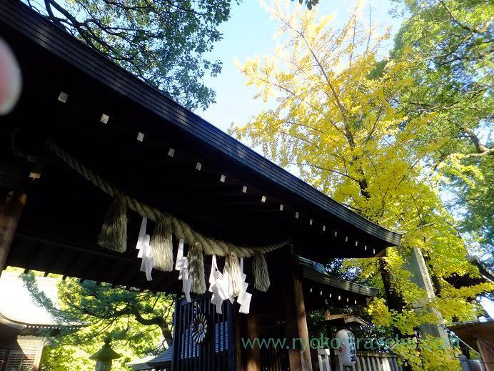 Main gate, Katsushika Hachimangu shrine (Motoyawata)