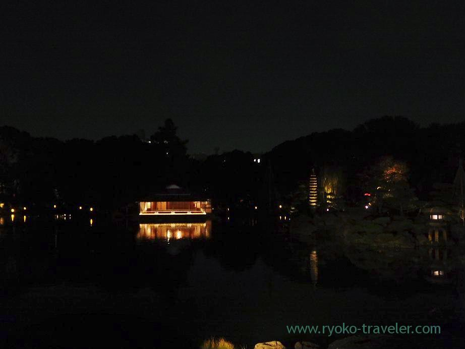 Light up Kiyosumi Garden in Autumn 3,(Kiyosumi-shirakawa)