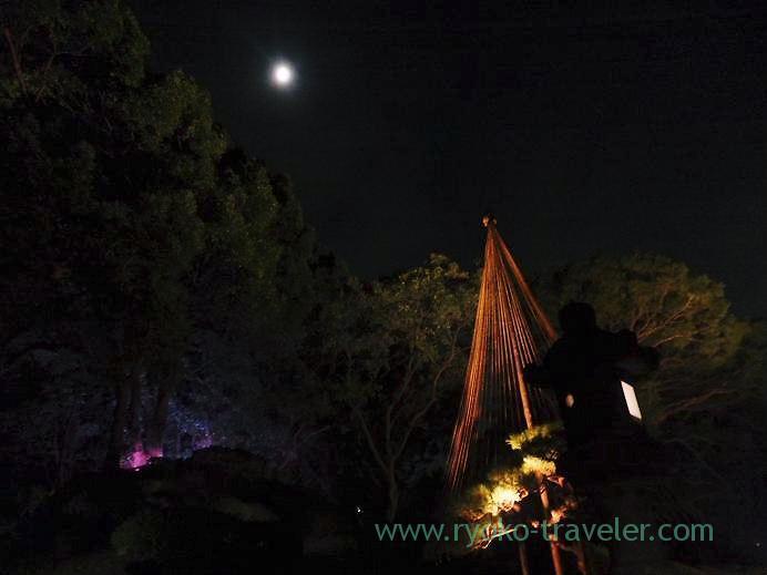 Light up Kiyosumi Garden in Autumn 7,(Kiyosumi-shirakawa)