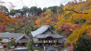 Trip to Nara 2012 Autumn – the 2nd day, Asuka 4