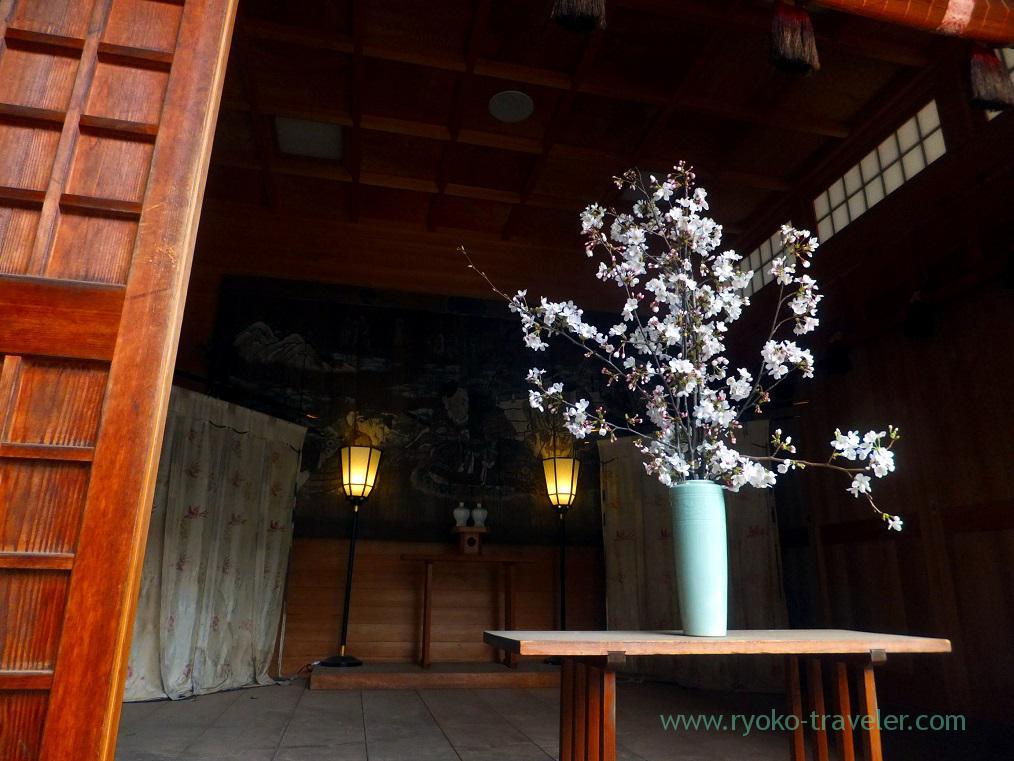 Cherry blossoms2, Katsushika Hachimangu shrine (Motoyawata)