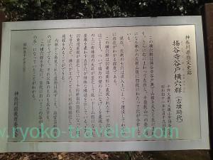 Yokokuji Yato Oketsubogun (Oiso)