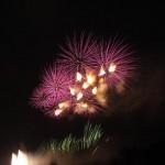 Edogawa ward Fireworks display 2013 (Shinozaki)
