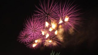 Edogawa ward Fireworks display 2013 (Shinozaki)
