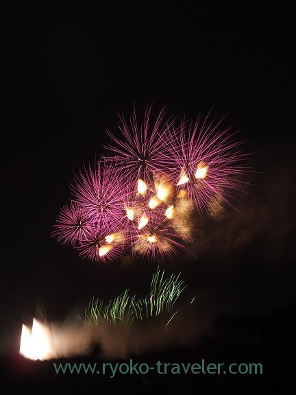 Edogawa ward fireworks display1 2013
