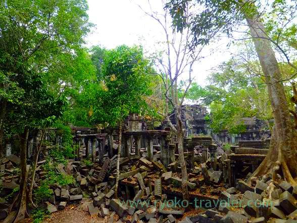 Beng Mealea5(Siem Reap2014)