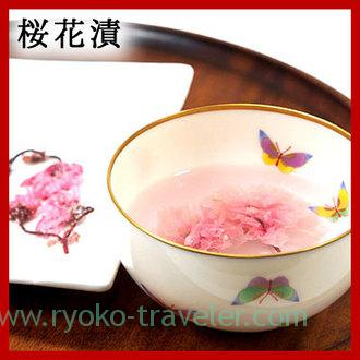 Pickled cherry blossoms with salt(SANUKI UMIMONDOKORO OMORIYA)
