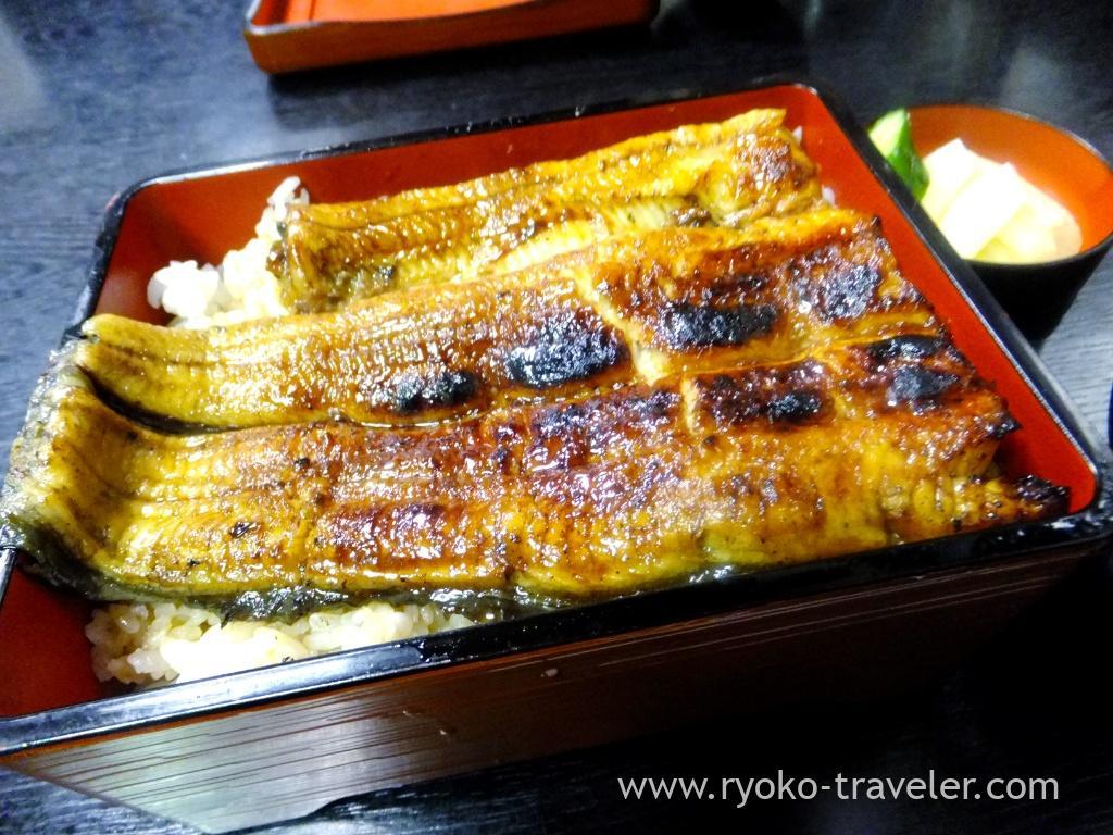 Eels, Akagaki (Hatsudai)