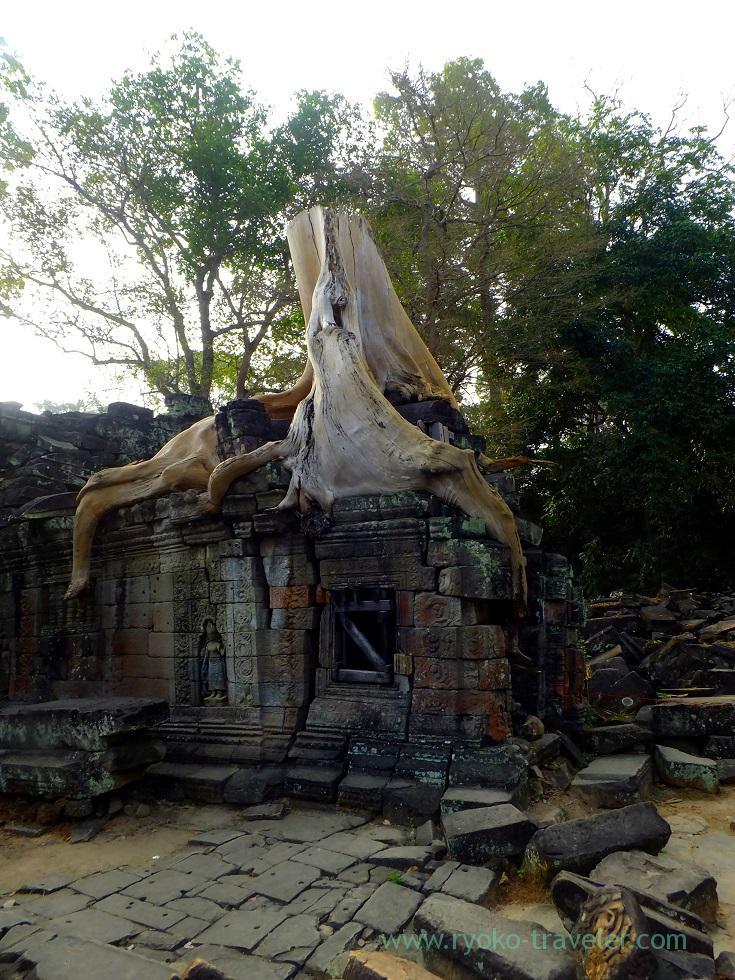 Preah Khan 3, Siem Reap2014