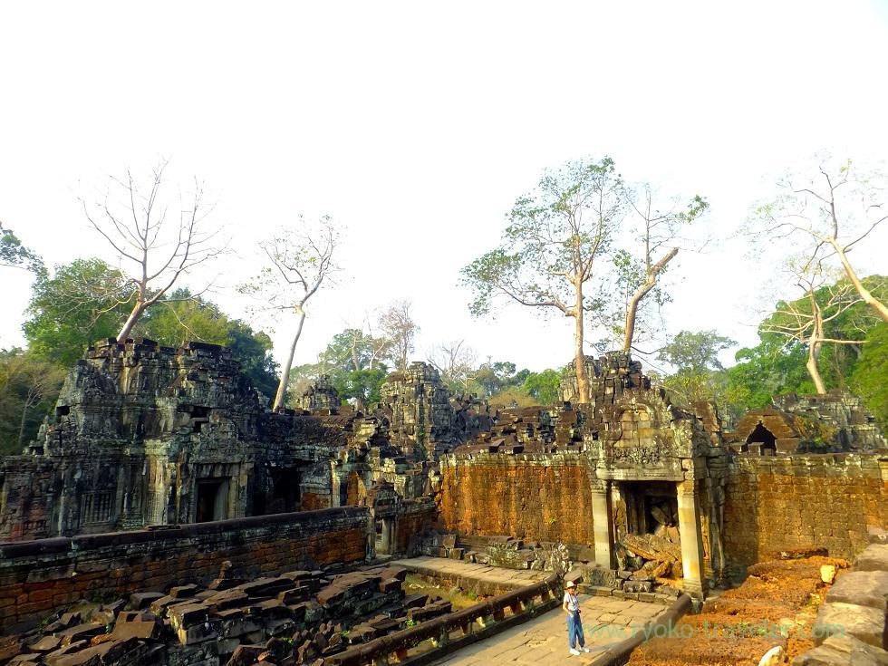 Preah Khan 6, Siem Reap2014
