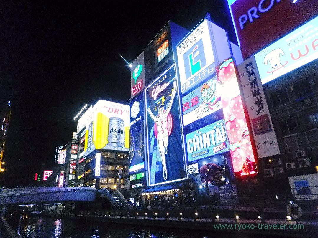 Illumination of Dotonbori 2 (Osaka 2014-1)