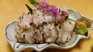 Pike conger and flathead season !(Ginza)