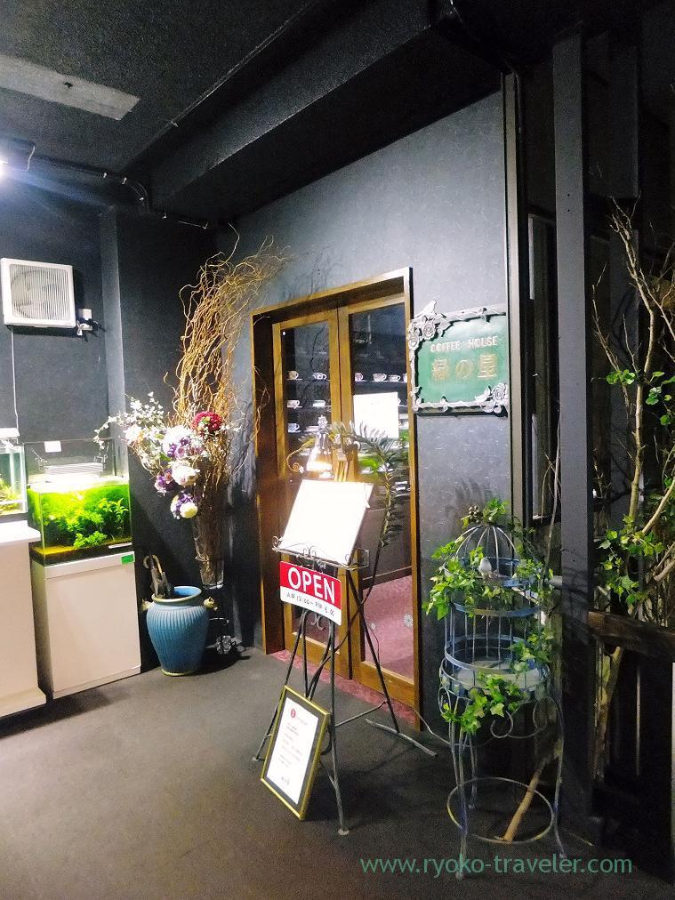 Appearance, Midori-no-hoshi (Yatsu)