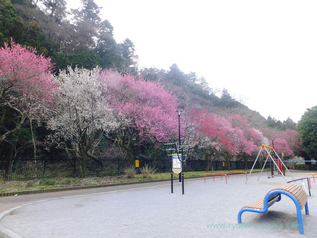 Children's park, Komakino Park (Takao)