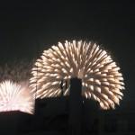 Tokyo Bay Fireworks 2015 (東京湾大華火祭)