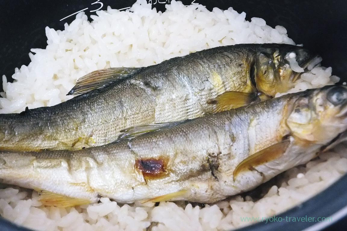 Sweet fish rice, Hometown tax from Shimanto village