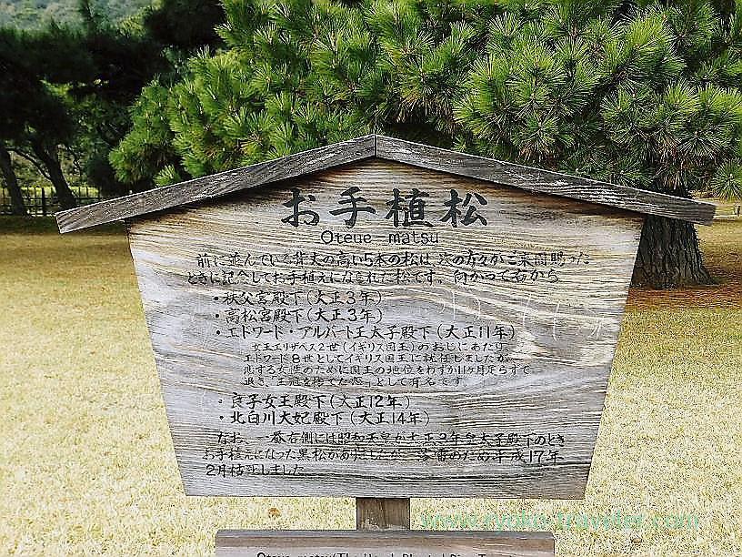 About Oteuematsu, Ritsurin garden, Takamatsu (Kagawa & Tokushima 2011)
