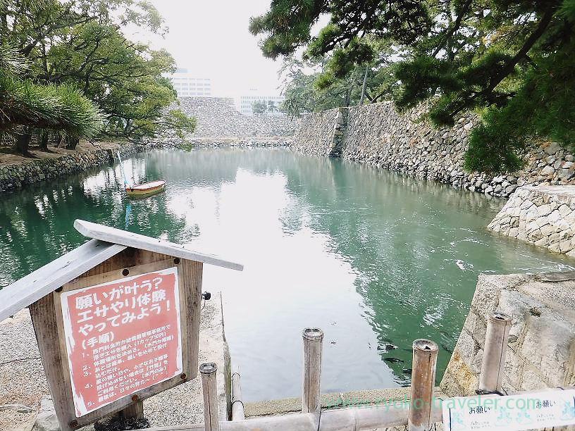 Feed sea bream , Tamamo garden, Takamatsu (Kagawa & Tokushima 2011)