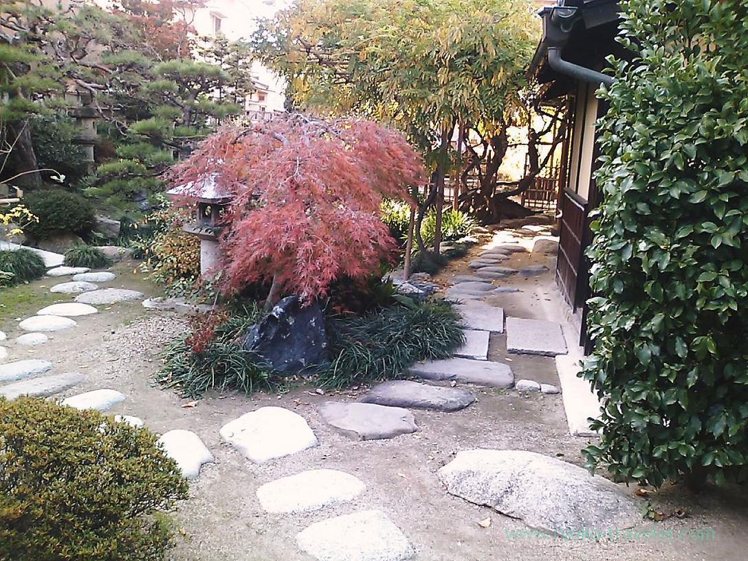 Garden ,Koshinan, Matsuyama (Ehime 2010)