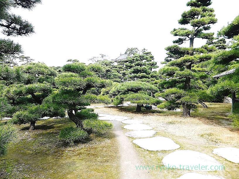 Garden, Tamamo garden, Takamatsu (Kagawa & Tokushima 2011)