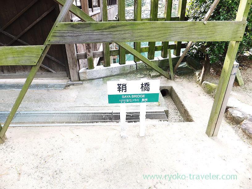 In front of Sayabashi bridge, Tamamo garden, Takamatsu (Kagawa & Tokushima 2011)