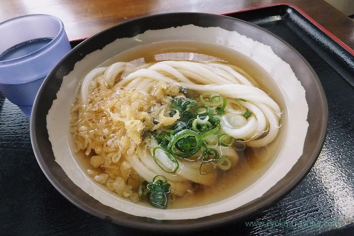 Kake udon, Ikegami Seimenjo, Kuko dori, Udon tour managed by Kotosan bus,(Takamatsu 2015)