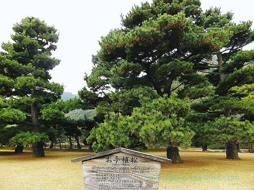 Oteuematsu, Takamatsu (Kagawa & Tokushima 2011)