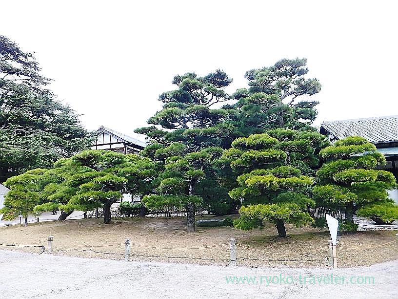 Ritsurin garden2, Ritsurin garden, Takamatsu (Kagawa & Tokushima 2011)
