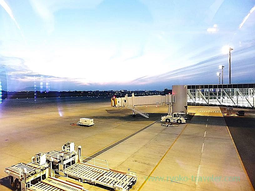Runway, Tokushima airport (Kagawa & Tokushima 2011)