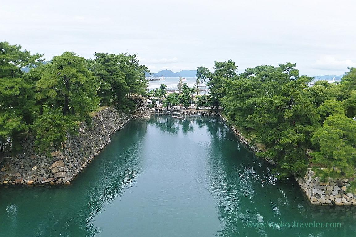 Moat used to have sea water, Tamamo castle, Takamatsu (Takamatsu 2015)