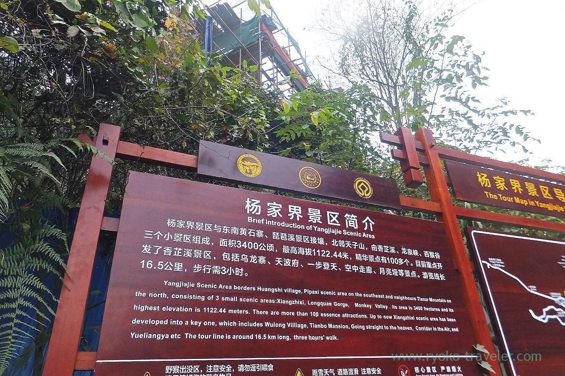 About, Yangjiajie scenic area,Zhangjiajie(Zhangjiajie and feng huang 2015)