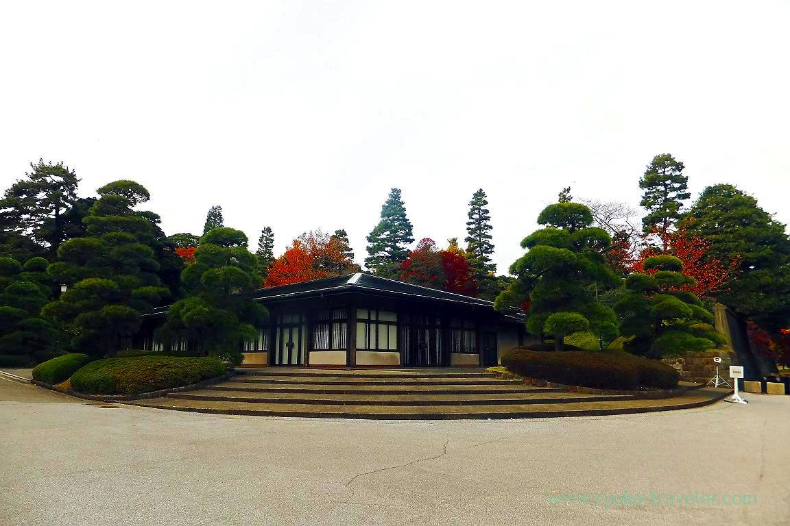 Autumn leaves 1, Opening of Inui street in Imperial palace to public 2015 Autumn
